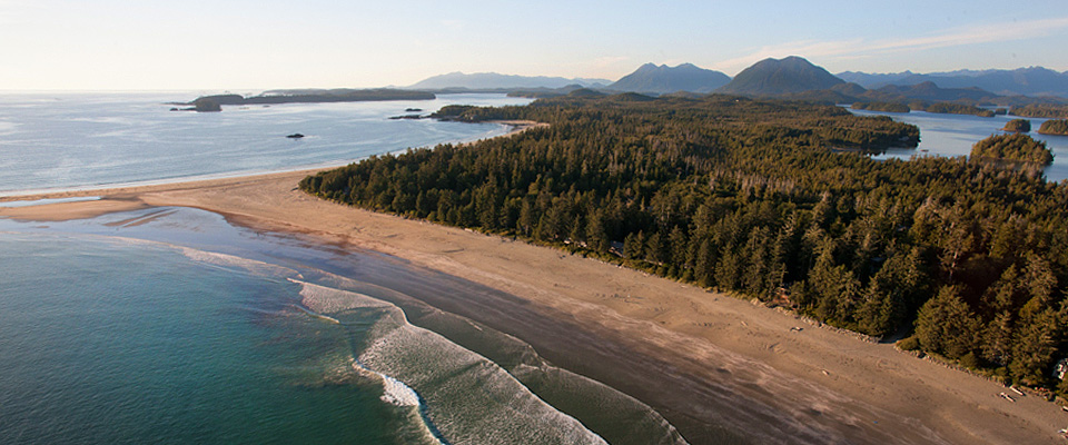 Where the Rainforest Meets the Sea - Tofino Accommodation